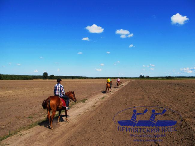 Конные прогулки в агроусадьбе