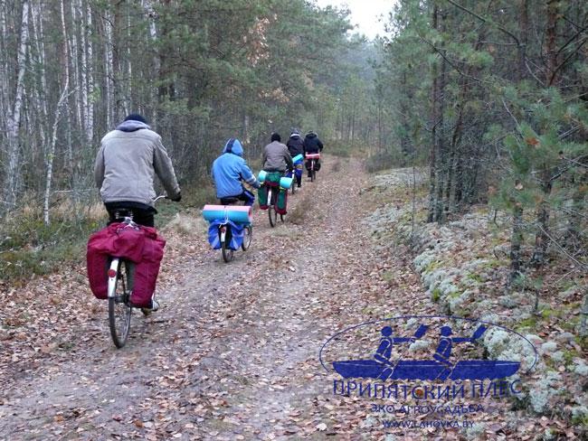 Велосипедные прогулки в агроусадьбе Припятский плес